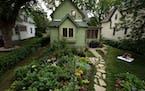 The back-yard garden of Jennifer Baldwin Peden and Tom Peden has been a joint production.