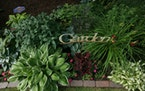 Connie Young has been tending the front and back yard cottage-style gardens of her Bloomington home for 20 years. She and her husband, John, edged the