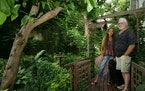Tom and Anna Erbes, both of whom are artists, have created a garden oasis in their Minneapolis yard.