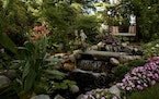 Kevin Blaeser and Cooper Hipp's garden contains many perches from which to view it.