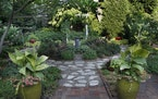 Beverly Moore's garden is structured and symmetrical, with stone walking paths and an arbor.