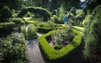 Lee and Jerry Shannon planted colorful shrub roses in the center of pruned boxwoods that shape their formal garden.