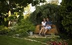 """A """"sofa"""" carved from a tree killed by Dutch elm disease is one of the many focal points in the enchanted Edina garden of Rosanne and Steve Malevich. T"""