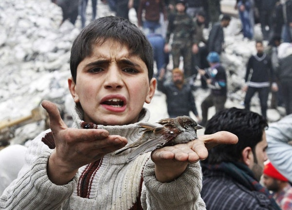 A Syrian boy holds a bird in his hand that he said was injured in a government airstrike hit the neighborhood of Ansari, in Aleppo, Syria.