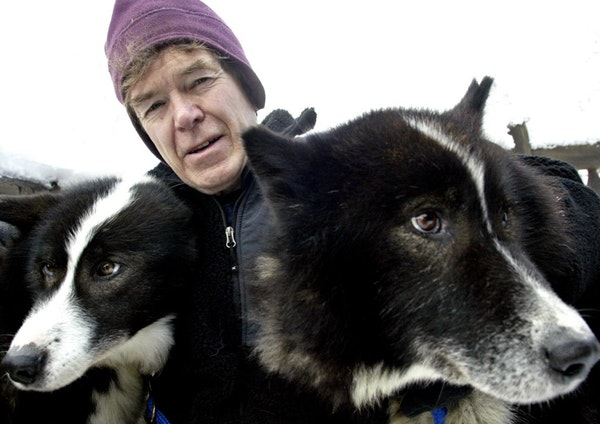 Will Steger with some of his sled dogs.