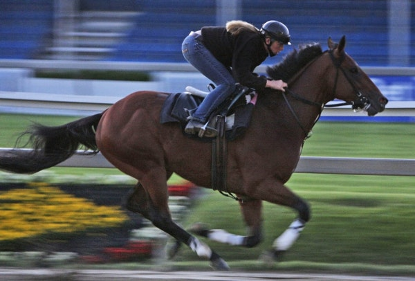 Big Brown won the Kentucky Derby and the Preakness, but failed to cross the finish line in the 2008 Belmont.