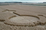 Cornfield patterns -- corn cirlcles -- are believed to be created by aliens.