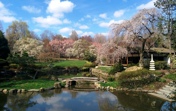 Shofuso Japanese Garden in Philadelphia. The three dominant features in a Japanese garden are plants, stones and water.