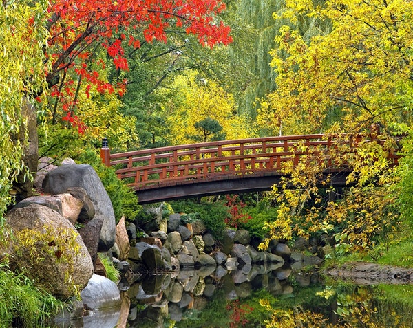 Anderson Japanese Gardens in Rockford, Ill., was named 2014's top Japanese garden in the U.S.