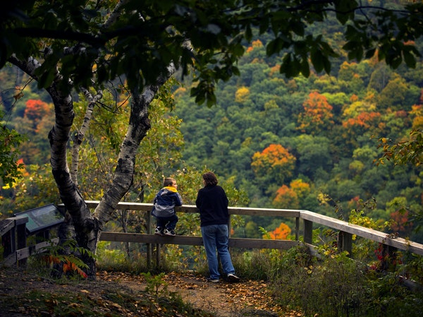 At Great River Bluffs State Park, campers can explore the wooded bluffs rising hundreds of feet above the Mississippi River.