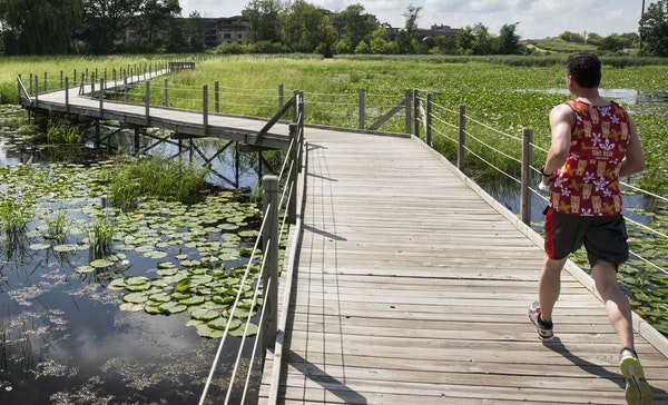 A jogger ran on the walkway that juts through Lake Camelot on Monday. Another Mud Lake in Hennepin County is now Golden Lake.