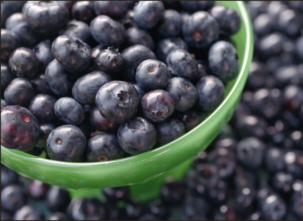 It's the perfect time to pick your own blueberries.