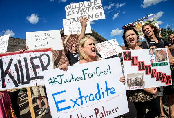 Kristen Hall led the group of protesters from Animal Rights Coalition and Minnesota Animal Liberation in chants in front of Dr. Walter Palmer's dental