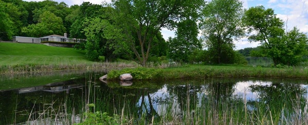 Doug Dayton restored nearly 40 acres of native prairie grasslands in the plot he bought in Orono in the 1960s.