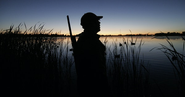 Minnesota's waterfowl season will open Sept. 26. It will last 60 days as in other years with a six-duck bag limit.