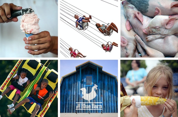 The Minnesota State Fair is filled with eye candy, ready made for Instagramming.