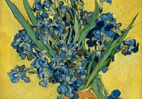 """The website of the Van Gogh Museum in Amsterdam show's the artist's works, including his 1890 """"Irises, Saint-Rémy-de Provence."""""""
