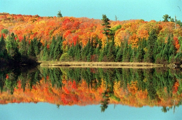 FILE -- When Minnesota's fall colors are on full display, they are spectacular. This file photo from September 2004 was taken at a pond in Temperance