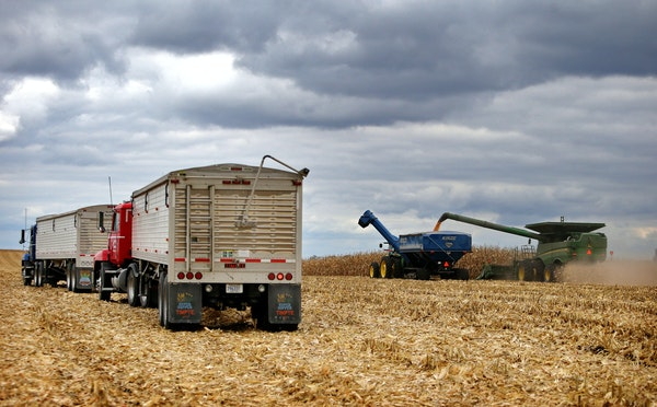 Members of the Peterson family, who operate Far-Gaze Farms, worked harvesting corn near Northfield in October.