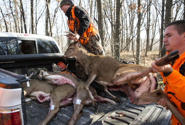 Increasingly, hunters are having difficulty finding butchers to process their deer. Many meat markets are too busy with other parts of their business,
