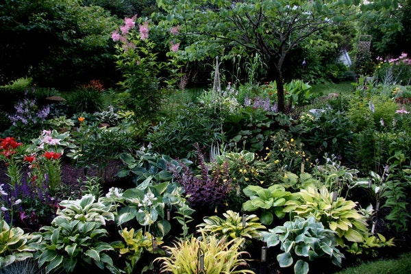 Mike and Kathy Pedersen's Shakopee gardens are an oasis of colorful perennials and hosta bordering a stream and pond. Provided
