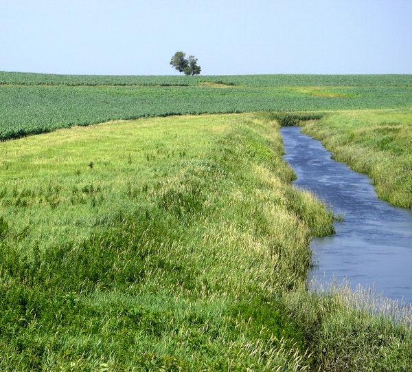 Gov. Mark Dayton's decision last week to exclude private ditches from buffer strip mapping was an obvious setback to his hard-fought 2015 water-qual