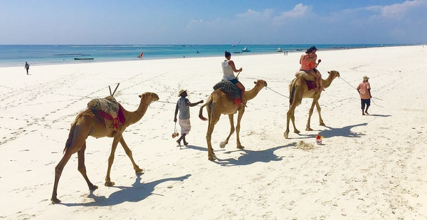 A trio of Minnesotans head out for a bumpy camel ride.