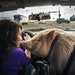 In Coon Rapids, Breeka Goodlander took her pig George to Petco get some treats and fresh air.
