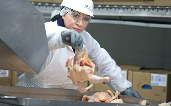 With sales growing substantially, the Gold'n Plump chicken processing plant in Cold Spring, Minn., is undergoing a major expansion. The plant has 70