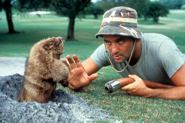 """Bill Murray starred in the greatest movie of all-time, """"Caddyshack."""""""