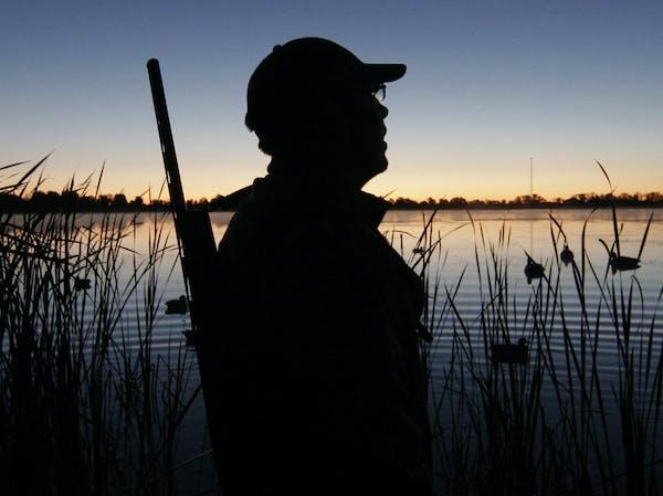 The Minnesota duck hunting season opens a half-hour before sunrise on Saturday.