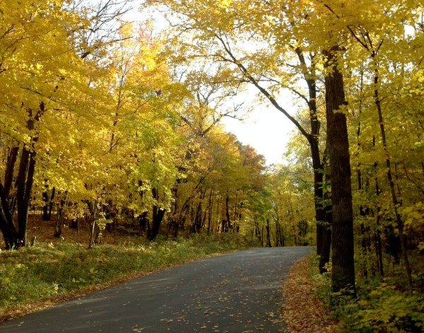 Maplewood State Park will be awash in fall colors during Leaf Days.