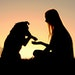 Woman sitting outside in the grass, shaking hands with her German Shepherd dog, silhouetted against the sunsetting sky