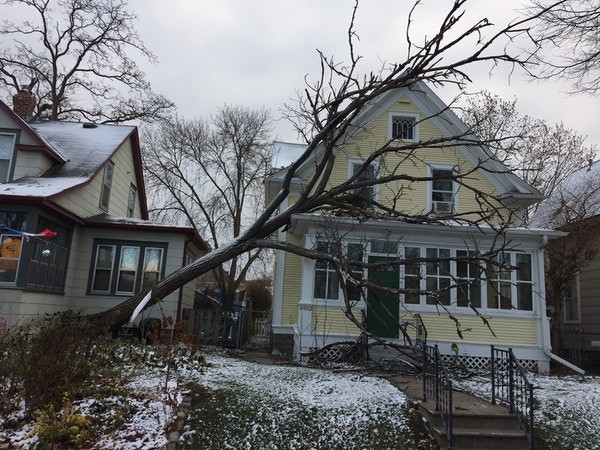 High winds downed some trees and branches in the Twin Cities. A tree tipped over onto this home in the 3800 block of Harriet Avenue S. in Minneapolis.
