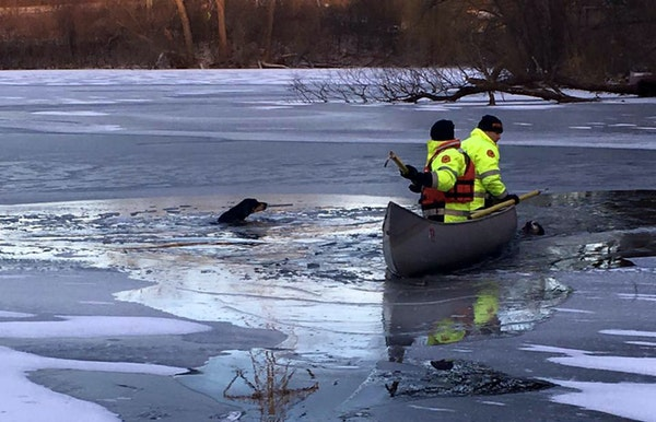 Eagan firefighters neared two dogs that were near drowning after falling through thin ice on East Thomas Lake.