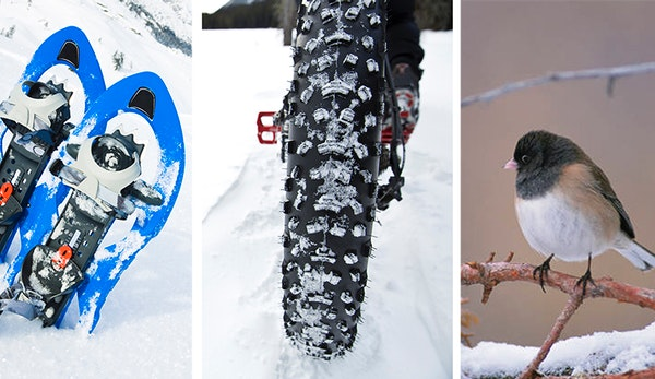 Snowshoeing, fat biking, birding are among the many winter activities through February and into March.