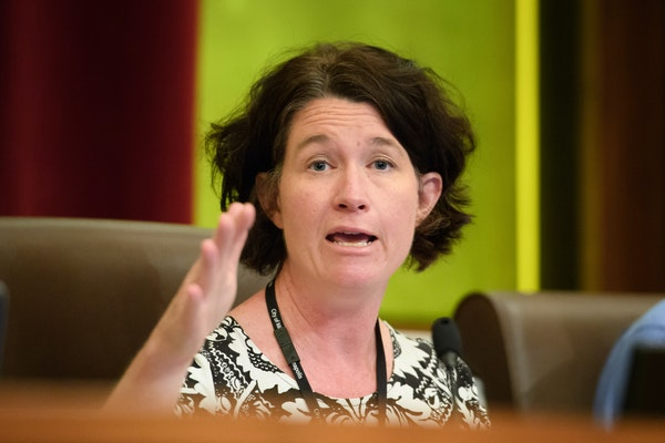 Council Member Elizabeth Glidden is one of the sponsors of a proposed ordinance that would prohibit landlords from denying renters because they have a