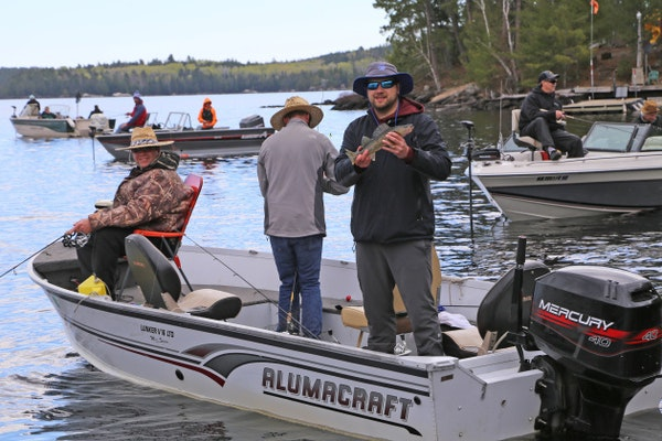 Walleyes cooperate on Crane Lake on first day of fishing opener