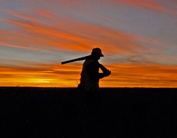 John Cooper of Pierre, S.D., his background deep in wildlife, hopes South Dakota pheasants and their habitat can rebound.