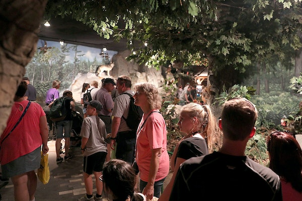 Fairgoers walked though the DNR's building featuring scenes from Minnesota landscapes.