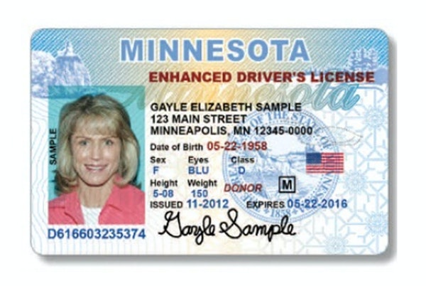 Minnesota sample identification card and drivers license.