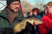The 20th Annual International Eelpout Festival in Walker, Minn. -- Abe Hiro, senior correspondent for Fuji Television Network News, holds an eelpout f