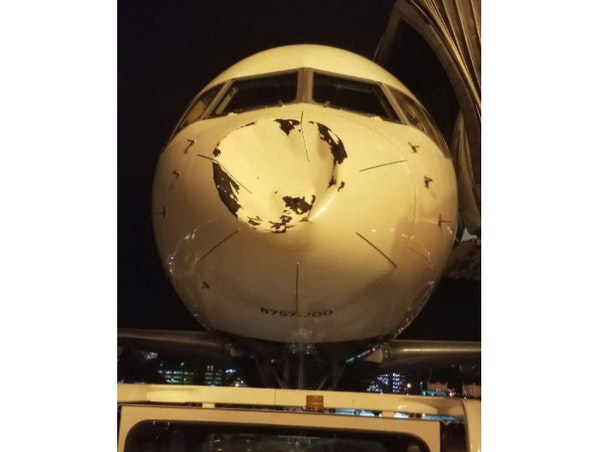 Fowl! Bird strike blamed for damage to plane carrying NBA's Thunder from MSP