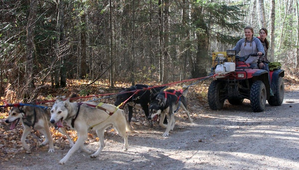 Nicole Grangroth, left, and her sister Brenna used an ATV for sled dog training Oct. 20 during a mushers' gathering near Togo, Minn.