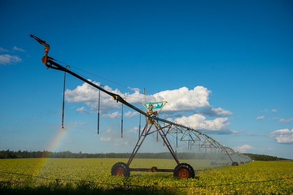 A pivot irrigation system sprayed water onto a soybean crop just south of Park Rapids in Straight River Township in mid August. The Straight River is