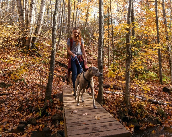 Alyssa Hei of Duluth is a 2018 Groundskeeper for Granite Gear, focused on the Superior Hiking Trail. She is shown on the trail with her dogs Milhouse