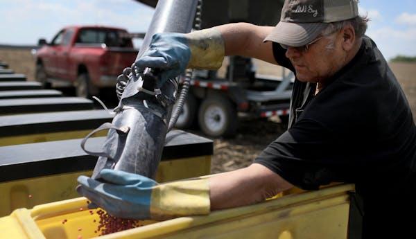 Bob Worth loaded soybean seeds into a planter on the family farm in Lake Benton, Minn.