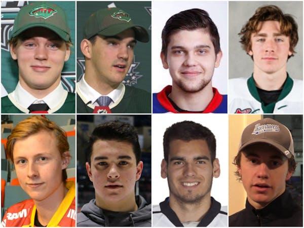 Wild draft picks (from top left to right, then bottom left to right): Filip Johansson, Jack McBain, Alexander Khovanov,Connor Dewar, Simon Johansson,