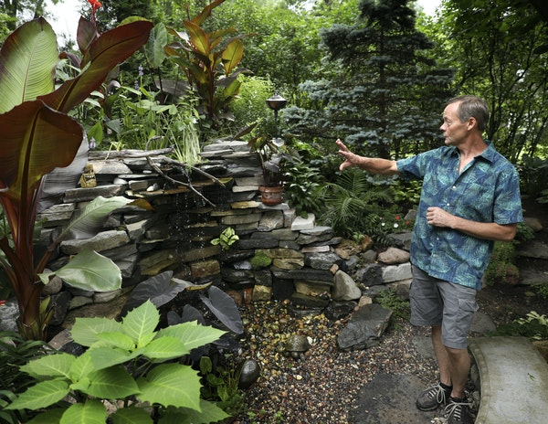 """Steve Danielson built a stacked stone """"grotto"""" water feature accented with tropical plants in his Maplewood front yard."""