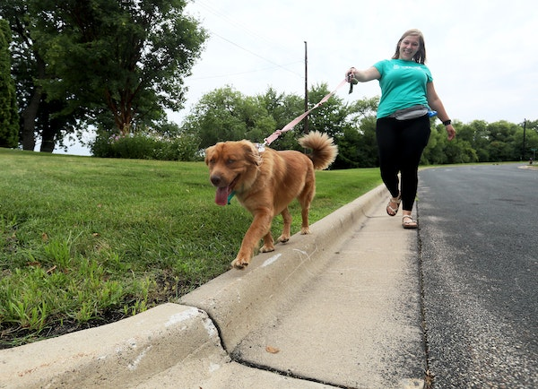 Claire Barczak is a 21-year-old dog walker who works for the dog app Wag two days a week. On any given day, she can walk as many as 16 miles a day, go